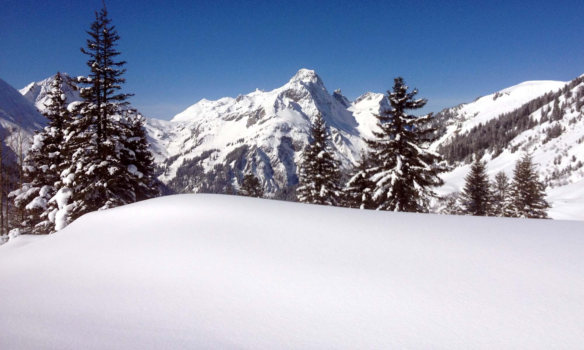 Dream Skiing